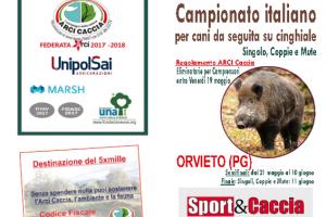 Umbria: Campionato Italiano Per Cani Da Seguita Su Cinghiale
