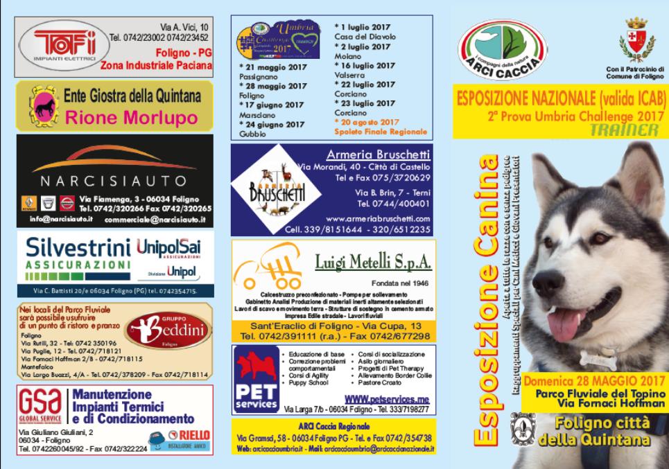 Domenica 28 Maggio A Foligno Esposizione Canina