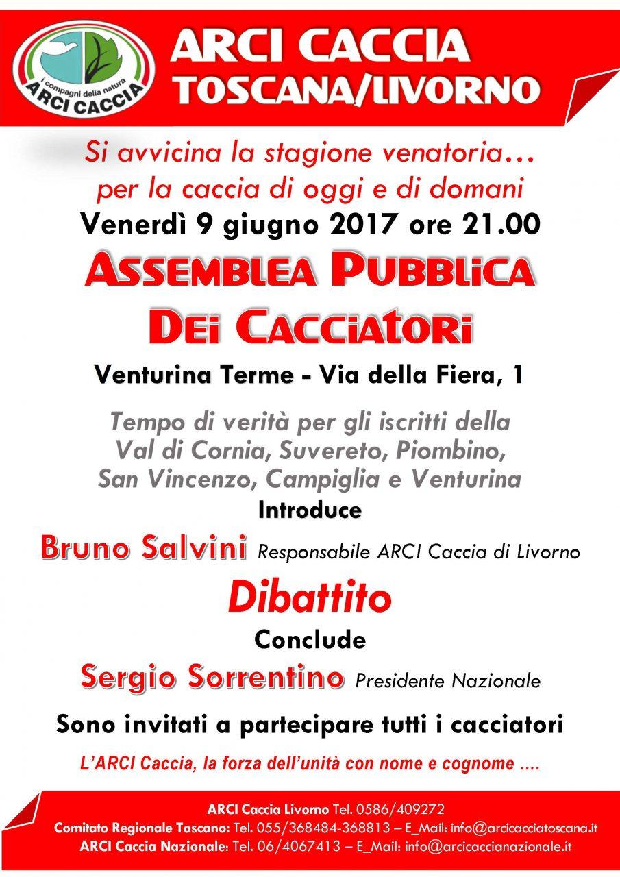 Assemblea Pubblica VENTURINA 9 6 17 (1)