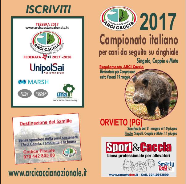 Domenica 11 Giugno Ad Orvieto Finale Nazionale Del Campionato Per Cani Da Seguita Su Cinghiale