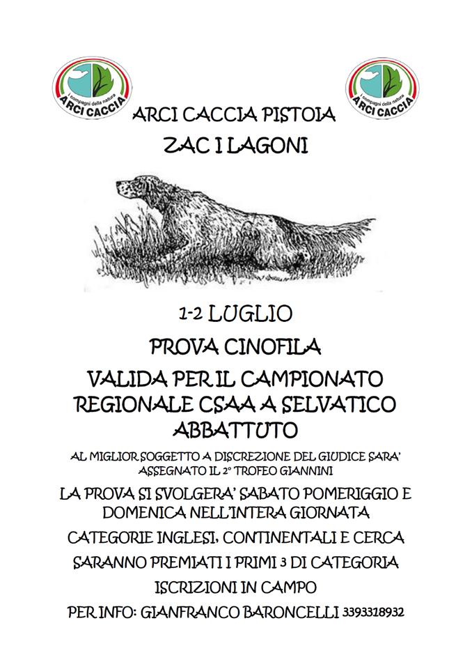 Gara Lagoni