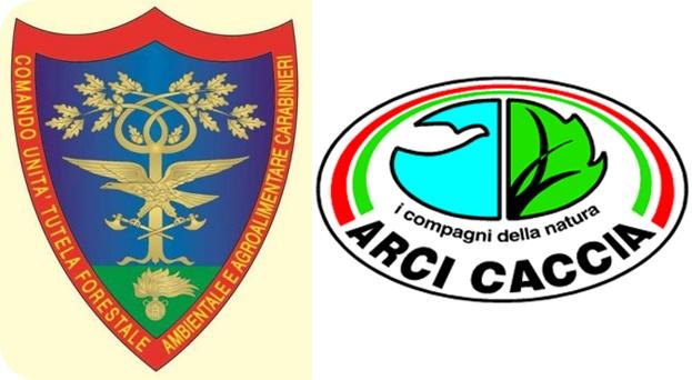 Arci E Cc