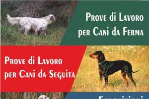 Pubblicato Il Calendario Delle Manifestazioni Cinofile Dell'Umbria