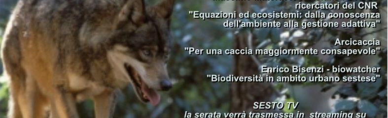Domenica 27 A Sesto Fiorentino Si Parlerà Di Fauna