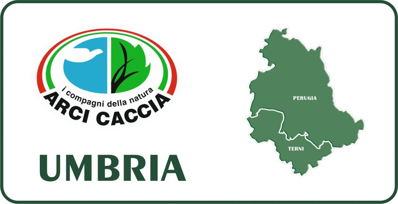 Umbria: Le Osservazioni Di Arci Caccia Al Calendario Venatorio 2021/22